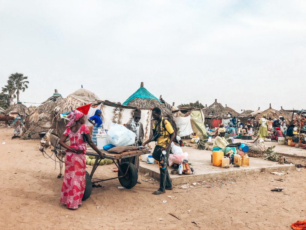 que faire au Sénégal